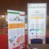 LASA 2018: EULAC-FOCUS exhibit at the LASA COngress in May 2018